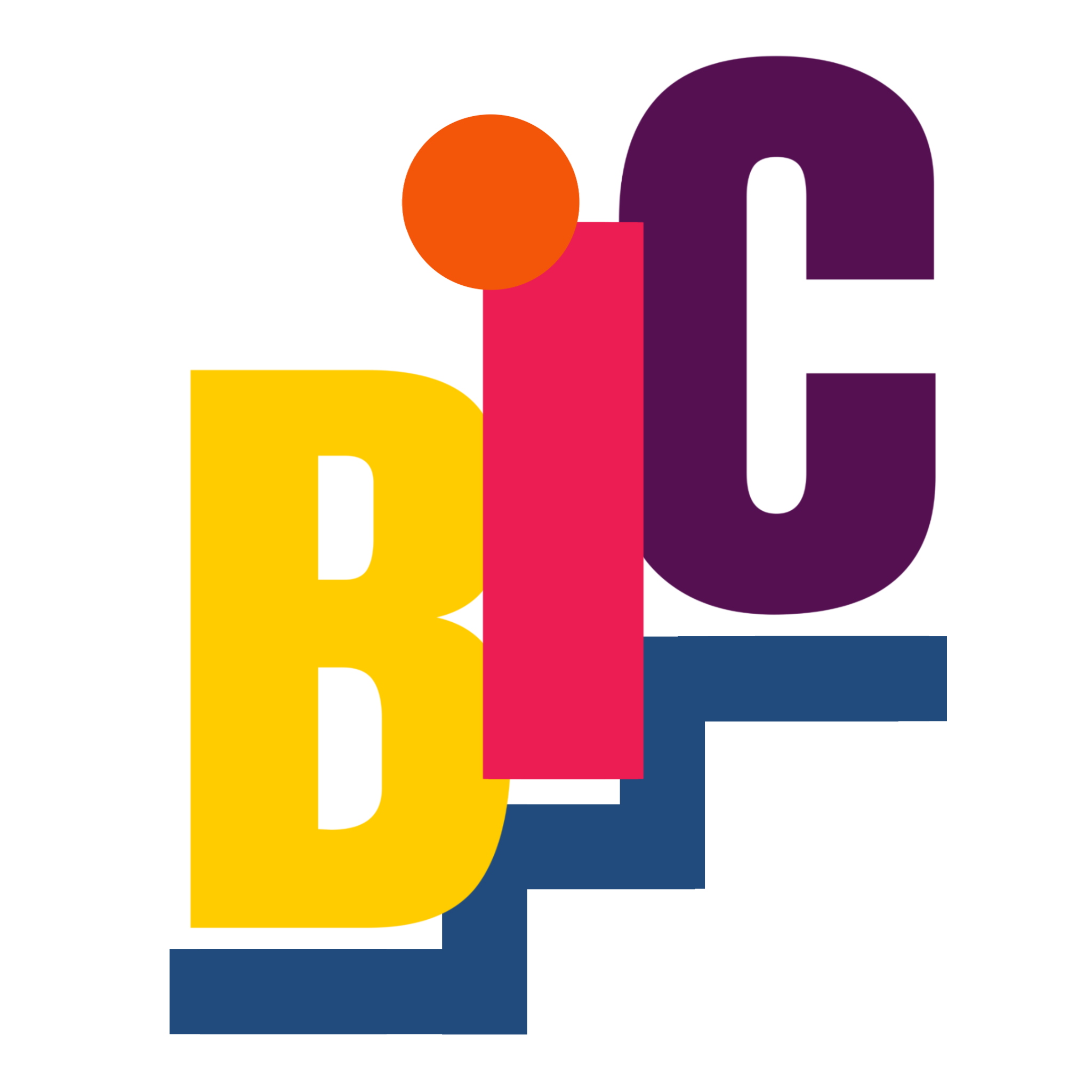 Bic project Logo